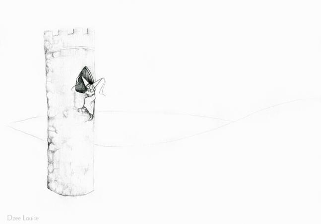 PSA 14 - graphite on paper - 8,5 x 11 inches
