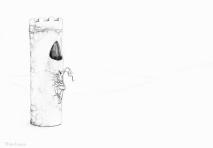 PSA 15 - graphite on paper - 8,5 x 11 inches