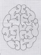 Brain Sketch 2a